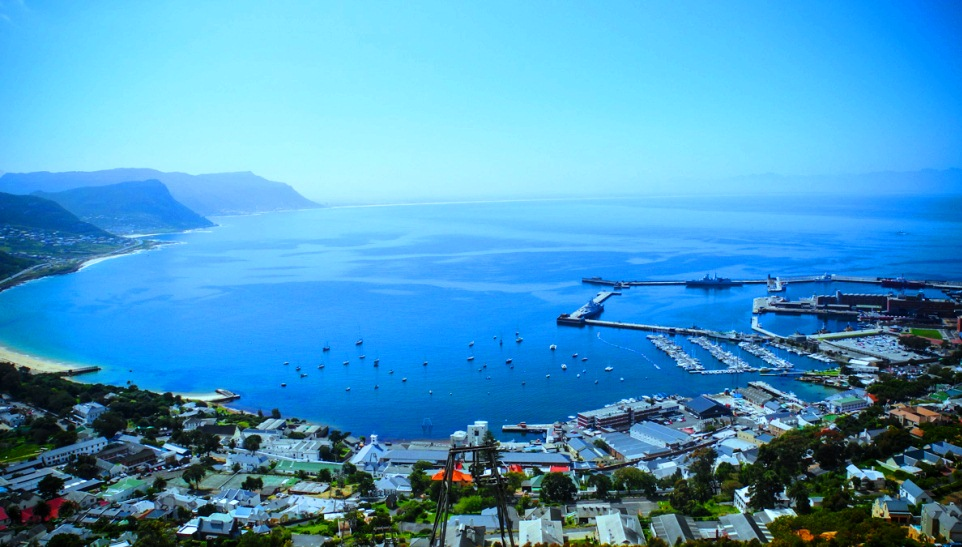 Cost of a 1 day Great White Expedition including transfers from a guest house in Simon's Town.