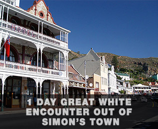 simonstowncapetown