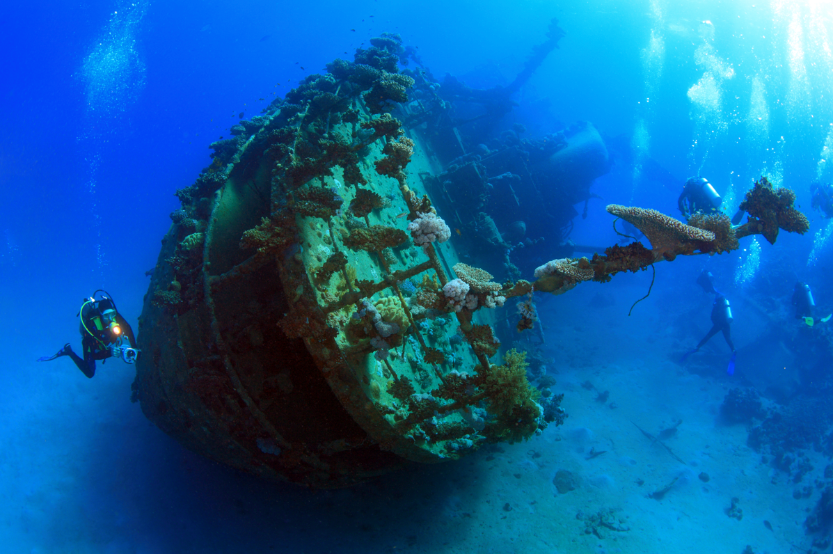ship wreck diving in south africa