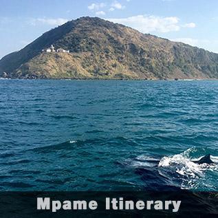 Sardine Run Mpame